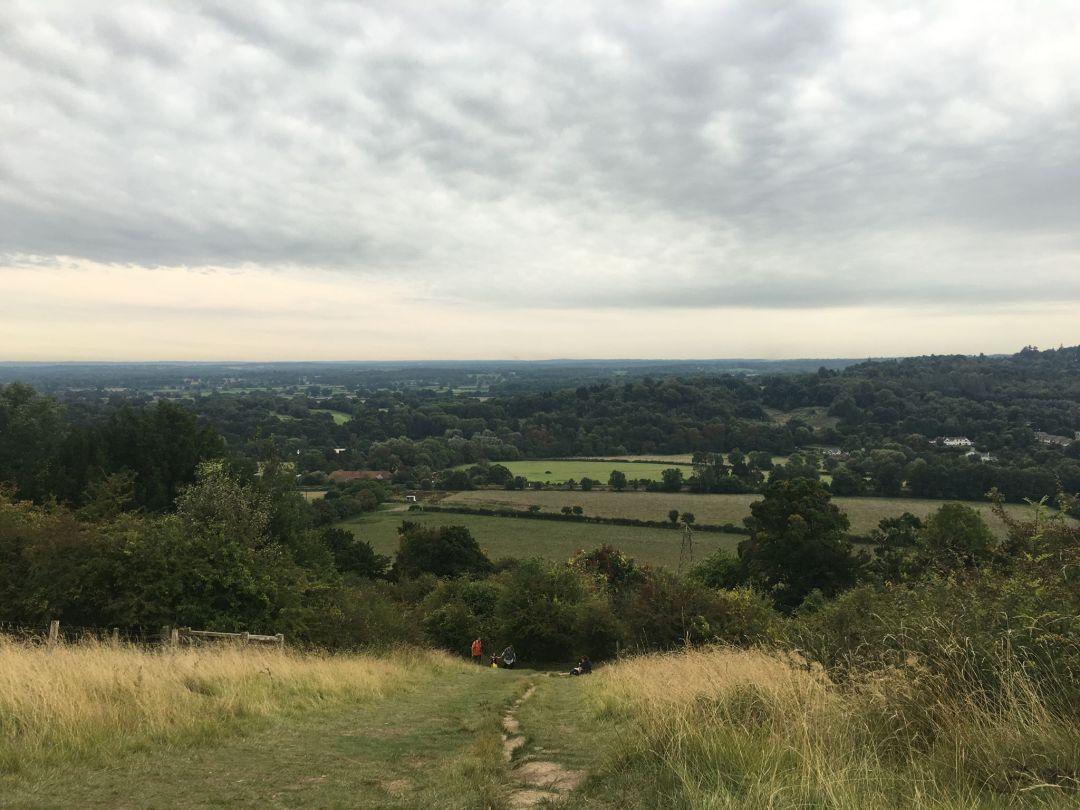 box-hill-hike-view.jpg