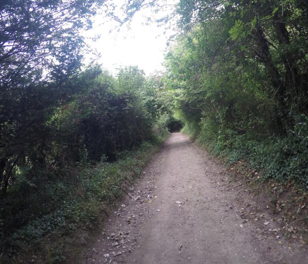 box-hill-hike-wading-wade2016-09-25-at-13-20-28