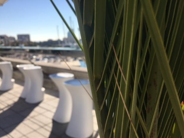 snapshots-of-barcelona-wadingwade_4694