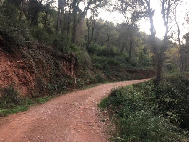 hiking-barcelona-montseny-mountains_4848