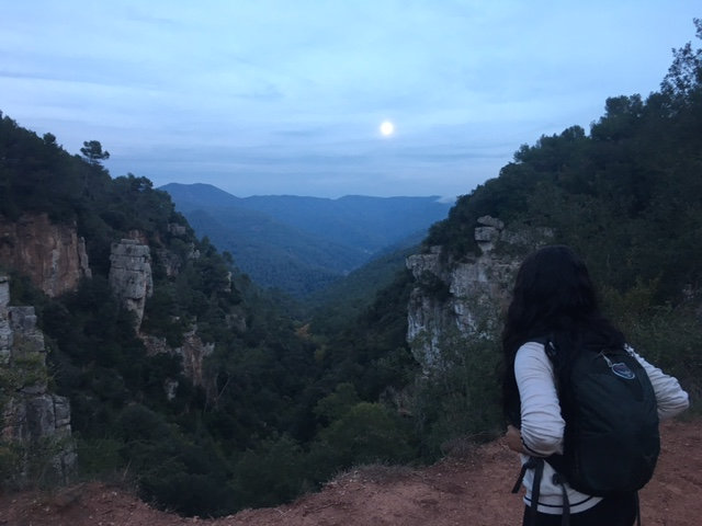 hiking-barcelona-montseny-mountains_4879